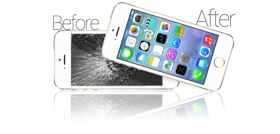 One Pivotal Term of the Iphone Guarantee If the Iphone Is Dismantled By Anyone